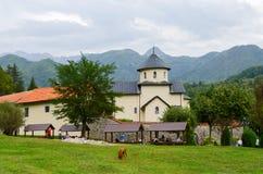修道院Moraca,黑山 免版税库存图片
