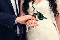 修饰新娘和一只蝴蝶在手上 免版税库存照片
