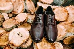 修饰` s鞋子和链扣在木背景 人` s辅助部件 库存图片