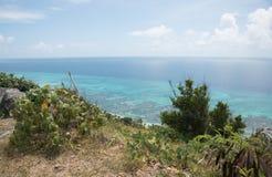 俯视伟大的星盘礁石 库存照片