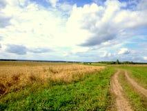 俯视俄国村庄的领域 免版税库存图片