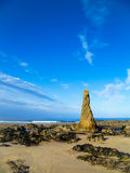 俯视北海的苏格兰海滩 免版税图库摄影