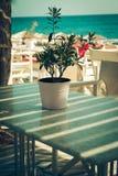 俯视地中海(希腊)的大阳台的传统希腊室外餐馆 库存图片