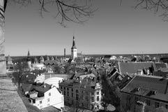 俯视城市的塔林爱沙尼亚全景 免版税库存图片