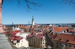 俯视城市的塔林爱沙尼亚全景 免版税图库摄影