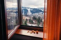 俯视多雪的Slavske村庄的开窗口 库存照片