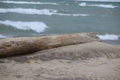 俯视密歇根湖的日志 免版税库存照片