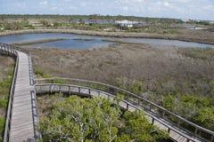 俯视木板走道的大盐水湖国家公园看法在Pensaocla,佛罗里达 免版税库存图片