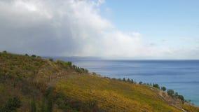 俯视海的秋天葡萄园 影视素材