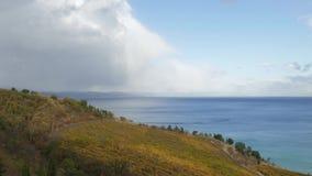俯视海,时间间隔的秋天葡萄园 股票录像