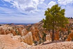 俯视的Bryce峡谷,犹他 库存图片