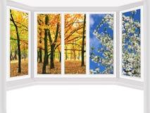俯视秋天公园和春天树的窗口 免版税库存照片