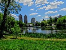 俯视水的中央公园 免版税库存照片