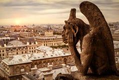 俯视巴黎的巴黎圣母院大教堂面貌古怪的人  免版税库存图片