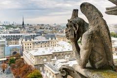 俯视Pari的巴黎圣母院大教堂的虚构物 免版税库存照片