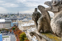 俯视Pari的巴黎圣母院大教堂的虚构物 库存照片