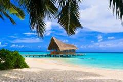 俱乐部热带潜水的海岛 库存照片
