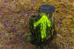 绊倒与在木头的一个绿色箭头 免版税图库摄影