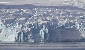 滑倒在南极州的海岸的冰川 免版税图库摄影