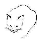 滑倒在线的猫 免版税库存图片