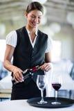 倒在玻璃的微笑的女服务员红葡萄酒 库存图片
