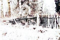 倒塌的篱芭 库存照片