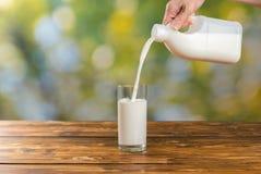 倒新鲜的牛奶的妇女入在绿色背景的一块玻璃 免版税库存图片