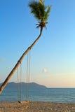 倒空停止从在浪漫的一个结构树的摇摆 免版税库存照片