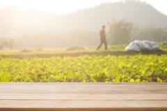 倒空木书桌空间站和空的农业a的 免版税图库摄影