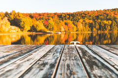 倒空湖的木船坞有在背景的树的 图库摄影
