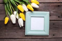 倒空蓝色框架和黄色和白色郁金香花在vintag 图库摄影