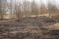 倒空被烧的地面 免版税库存图片