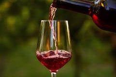 倒红葡萄酒的玻璃 免版税库存照片