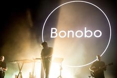倭黑猩猩电子音乐带在音乐会执行在小谎节日 免版税库存照片