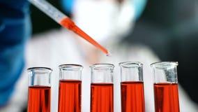 倾吐在试管的红色液体和检查反应的化学家 股票视频