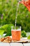 倾吐在从蒸馏瓶的玻璃的自创草莓蜜饯用在白色木桌上的椒盐脆饼在庭院里 免版税库存照片