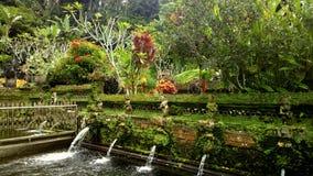 倾吐的春天巴厘岛 免版税库存照片
