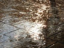 倾吐的雨 免版税图库摄影