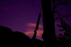 倾斜反对树的步枪 免版税库存照片