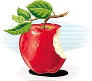 倾斜反对桌的苦涩苹果 向量例证