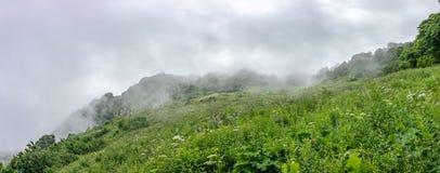 倾斜和山的绿色高山草甸在天际的雾 免版税库存照片