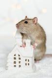 倾斜在圣诞节斯堪的纳维亚房子蜡烛的滑稽的鼠 库存图片