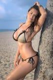 倾斜在棕榈树的海滩的诱人的妇女 图库摄影