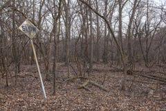 倾斜在秋天/冬天森林背景前面的老,被佩带的缓慢的标志 免版税库存图片