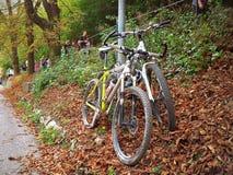 倾斜在路灯柱的两辆自行车 图库摄影