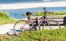 倾斜在长凳的老紫色自行车由海 图库摄影