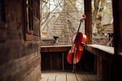 倾斜在门廊的大提琴 免版税库存照片