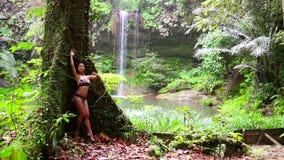 倾斜在雨林背景瀑布的性感的女孩巨大的树 股票录像