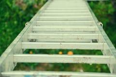 倾斜对房子的墙壁的一架长的银色铝梯子的顶视图 关闭从高梯凳上面的看法  免版税图库摄影