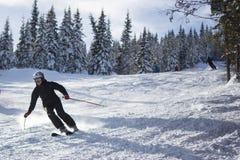 倾斜的男性滑雪者 免版税图库摄影